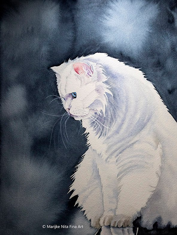 Cat in aquarel