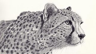 Cheetah in graphite