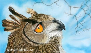 Eagle Owl in Mixed media