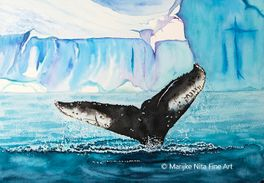 Humpback fluke in aquarel