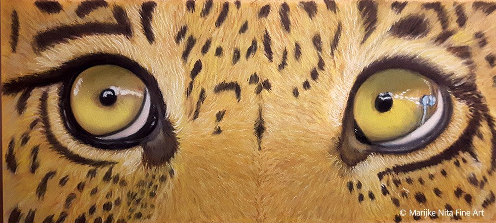 Leopard Eyes in pastel