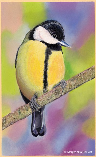 Great tit in pastel