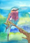Lilac breasted roller in mixed media